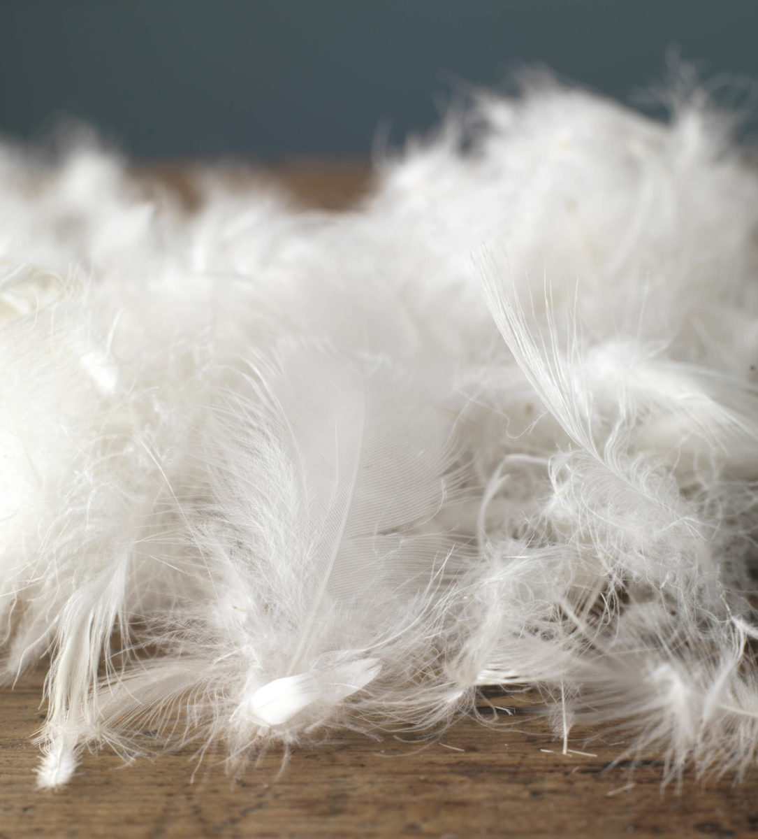 Hungarian Goose Feather & Down Duvet