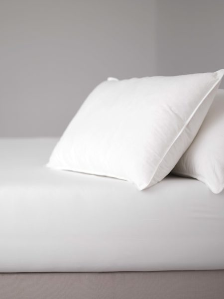 Delightful Duck Pillows - European Duck Feather & Down