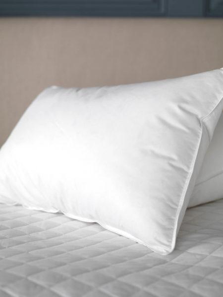 Gorgeous Goose Pillows - European Goose Down