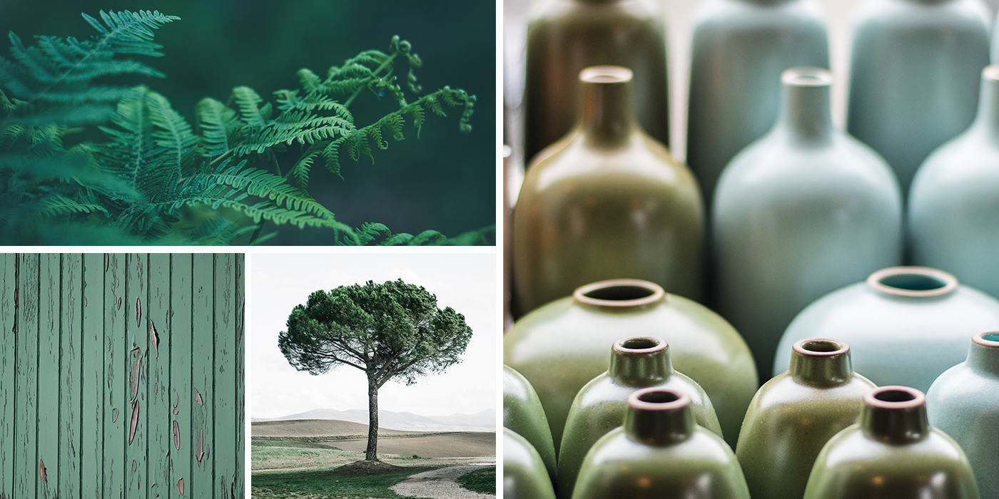 Collage of Green and Grey Images