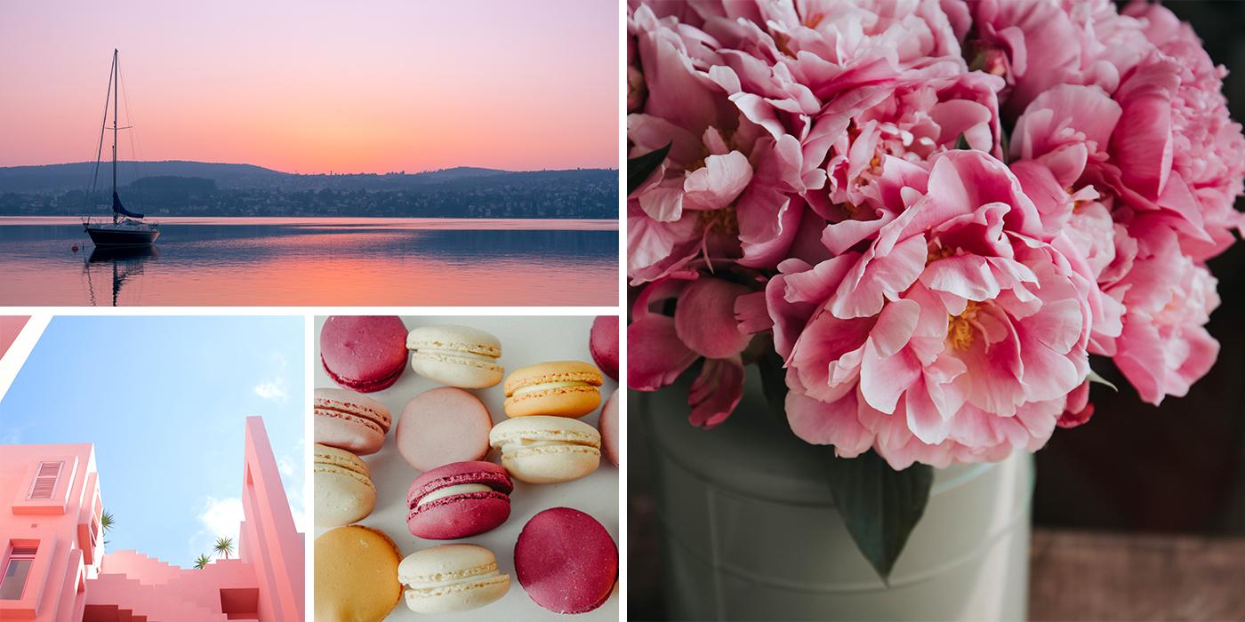Blush Pink Ideas