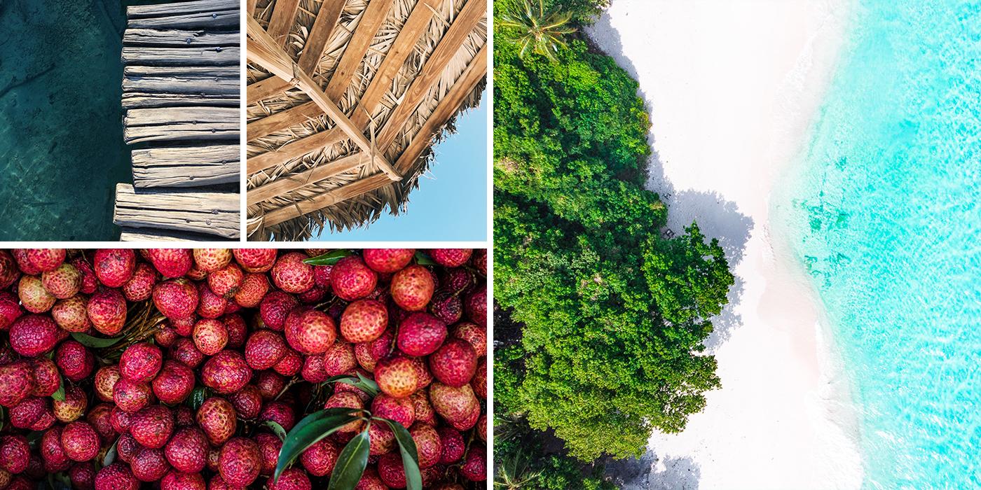 Tropical Caribbean Cabana